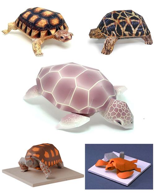 Сделать черепаху своими руками из бумаги 64