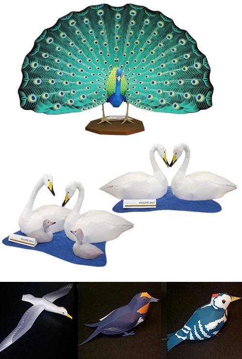 Подборка моделей птиц, орлы, пингвины, пеликаны, лебеди, павлин, утки, петухи и многие другие.